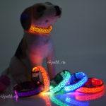 Светодиодный светящийся ошейник для собак купить.